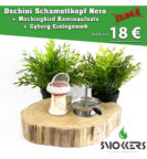 Dschinni Schamottkopf Nero Set - Preisfehler